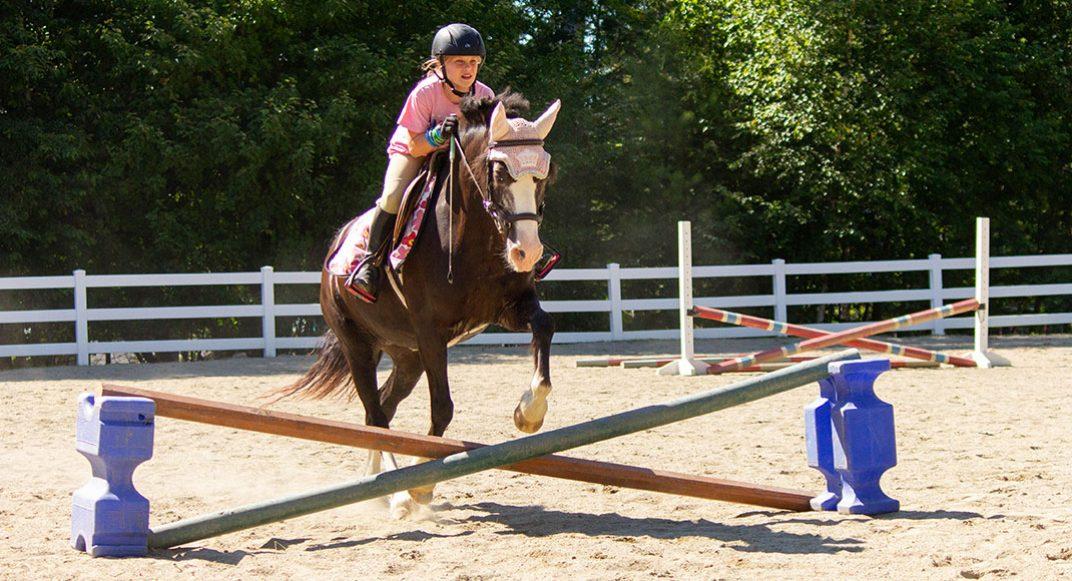 slides-horse-04