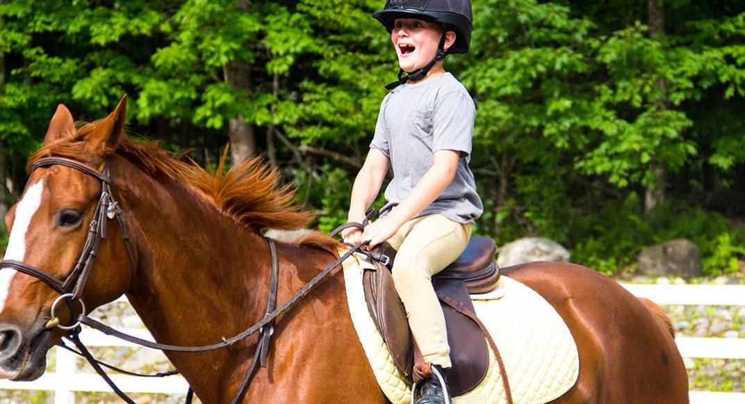 slides-horse-05