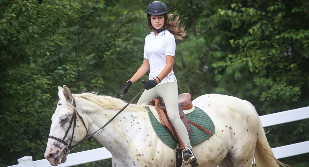 ss-equestrian-last-replace